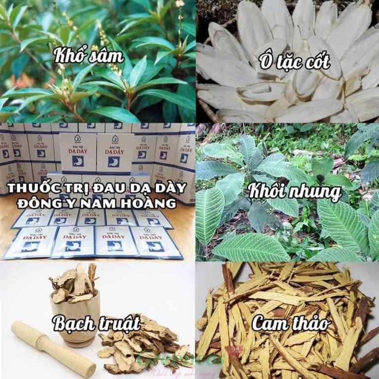 Thành phần thảo dược thiên nhiên của thuốc đặc trị đau dạ dày Nam Hoàng